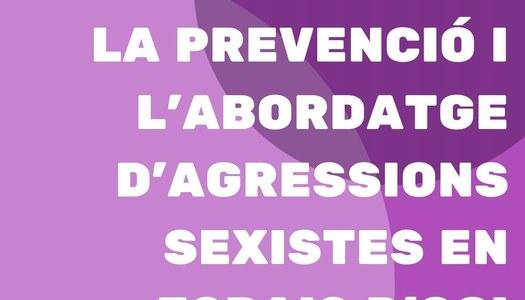 El Consell Comarcal de la Segarra engega formacions a entitats i ajuntaments per la prevenció i l'abordatge d'agressions sexistes en espais d'oci