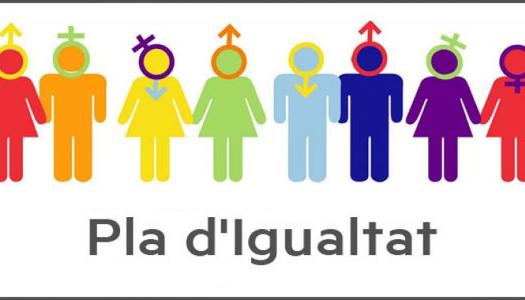 El Consell Comarcal de la Segarra engega la revisió del Pla d'Igualtat amb formacions per al seu personal