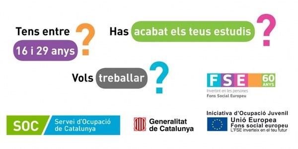 El Consell Comarcal de la Segarra rep una subvenció del Servei d'ocupació de Catalunya per poder inserir laboralment 3 joves