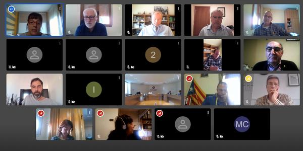 Moment del Consell d'Alcaldies per videconferència