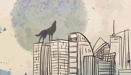 Els llops ja no viuen als boscos. 11a edició, any 2016